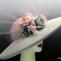 Pink and gray picture hat.